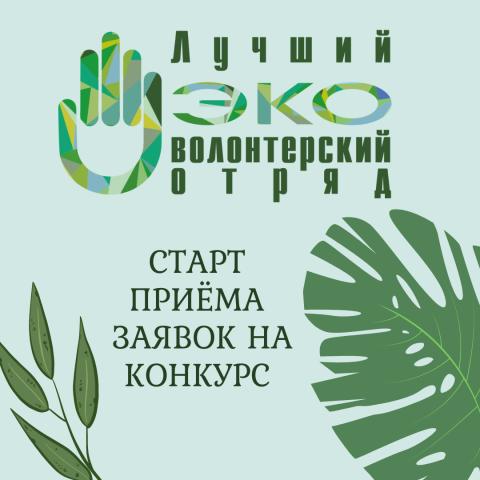 You are currently viewing IV Всероссийский конкурс «Лучший эковолонтерский отряд»